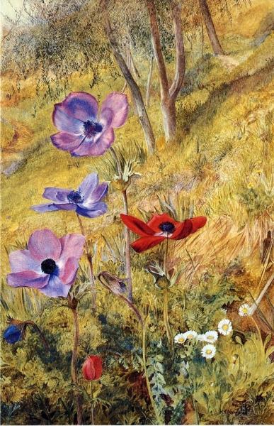anemones1876 Henry_ Roderick_ Newman
