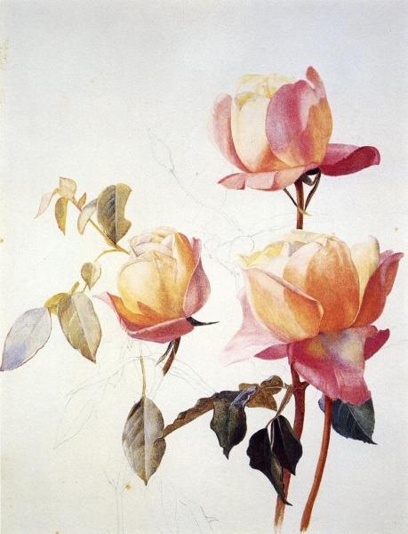 florentine-roses-1881 Henry_ Roderick_ Newman