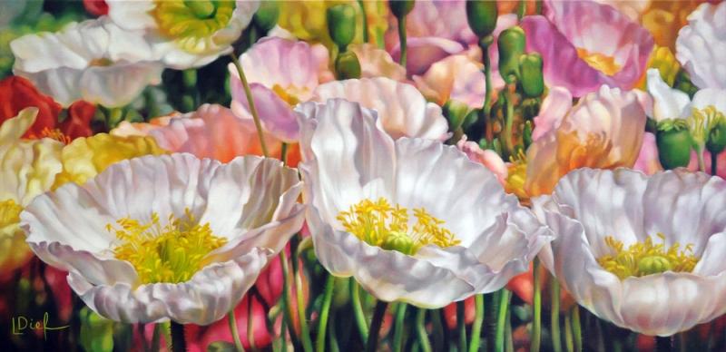 австралийская художница  Lyn Diefenbach