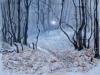 holodnoe-solnce-_yushina_elena_1293044269