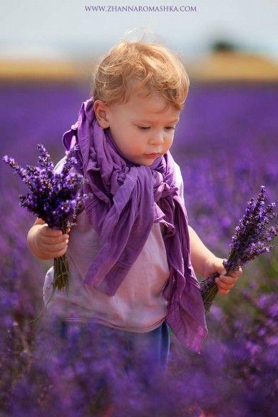 фиолетовые поля