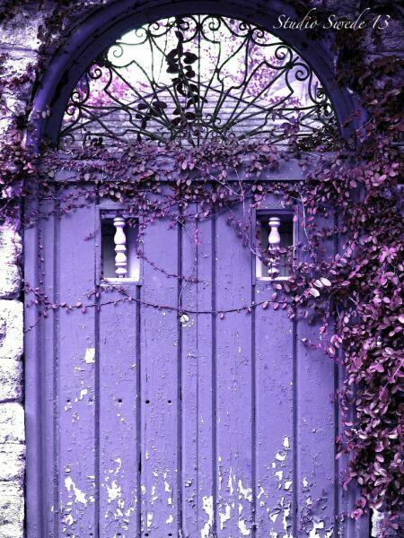 фиолетовая калитка