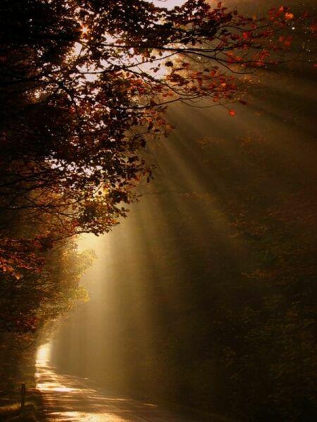 Октябрь осень фото природа