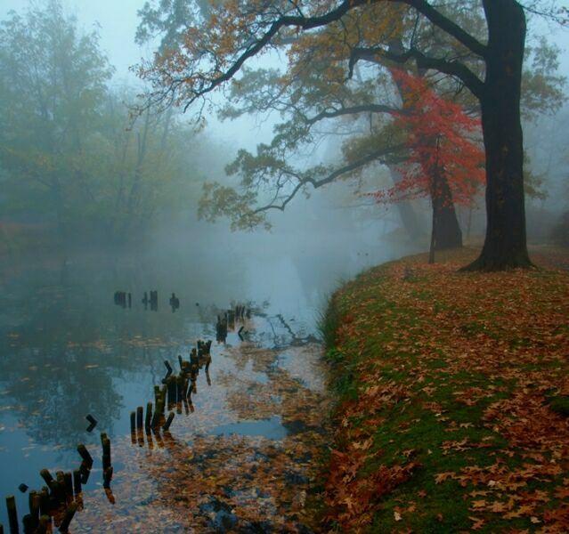 октябрьский туман