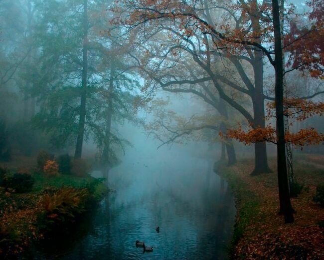 октябрь фото природы
