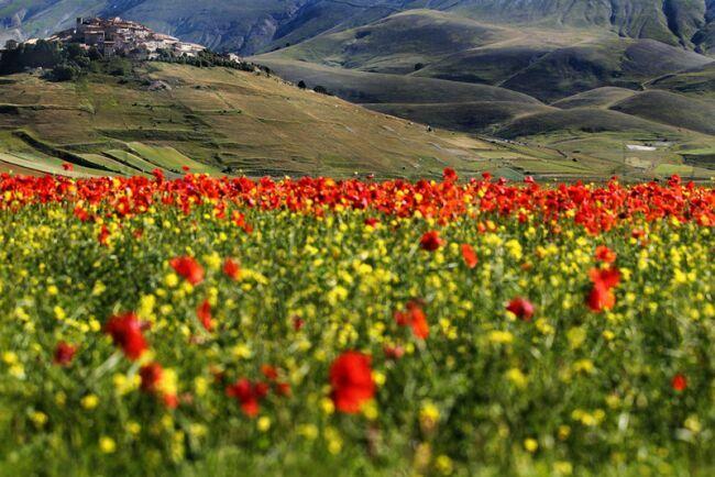 фотографии красивых пейзажей