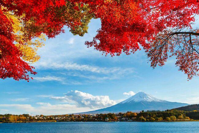 Фудзияма фото осенью