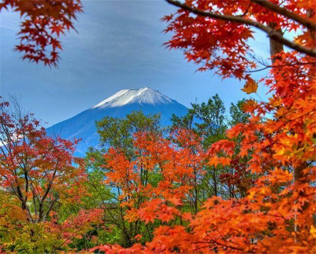 Вершина фудзиямы осенью