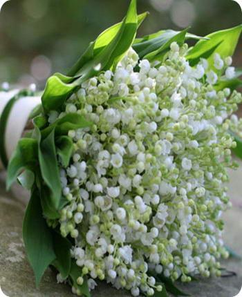 Букет цветов ландышей на фото
