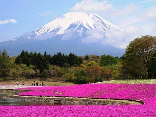 Гора фудзияма в Японии фото