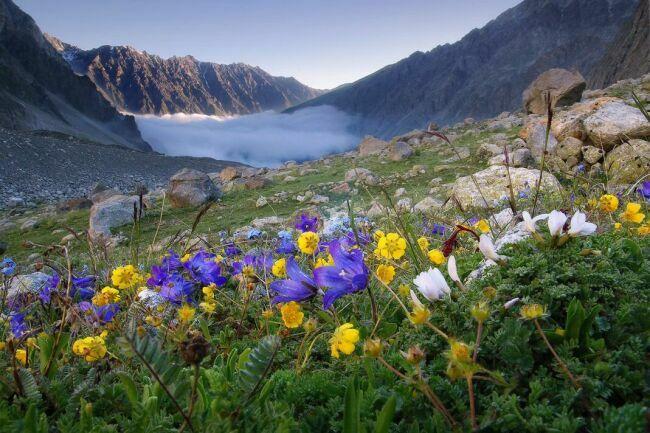 Краисвые пейзажи природы