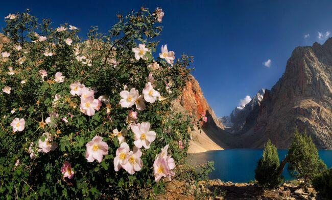 красивые пейзажи природы нафото Коржонова