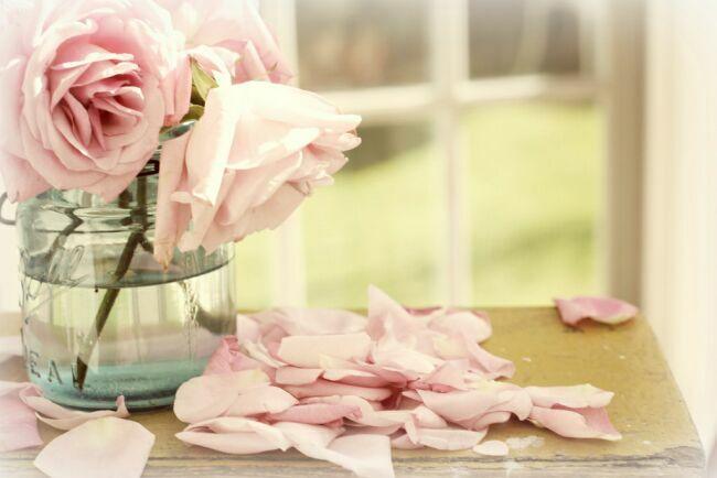 Опадающие розы