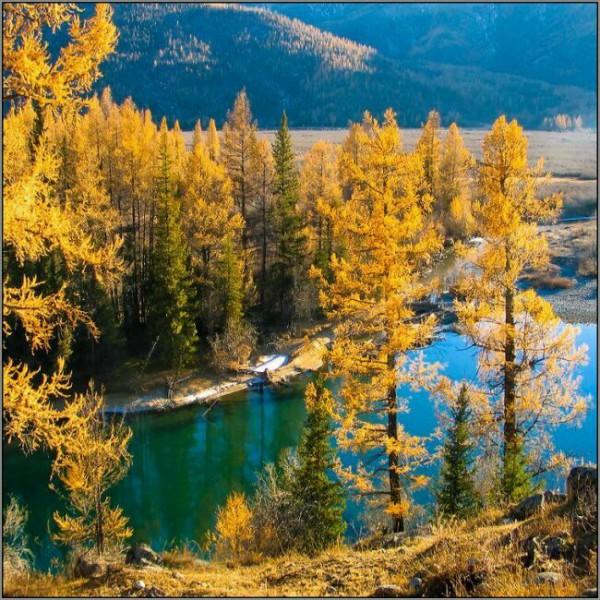 горный алтай фото осенью
