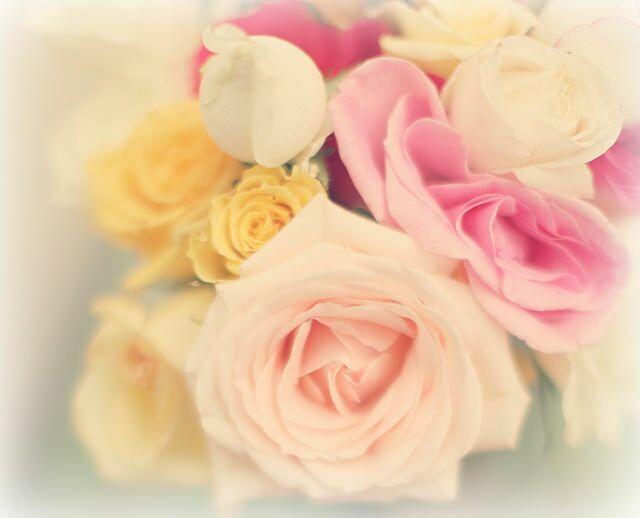 Фото цветов розы в букете