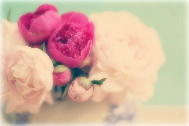 Букет цветов на фото