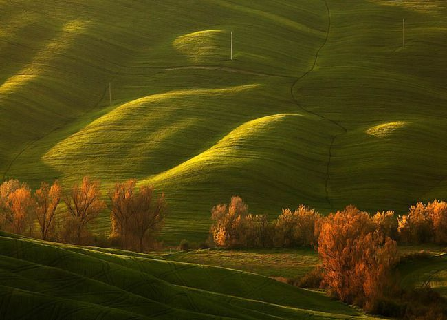 Фотографии зеленых холмов