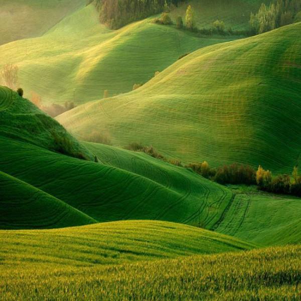 Солнечные холмы