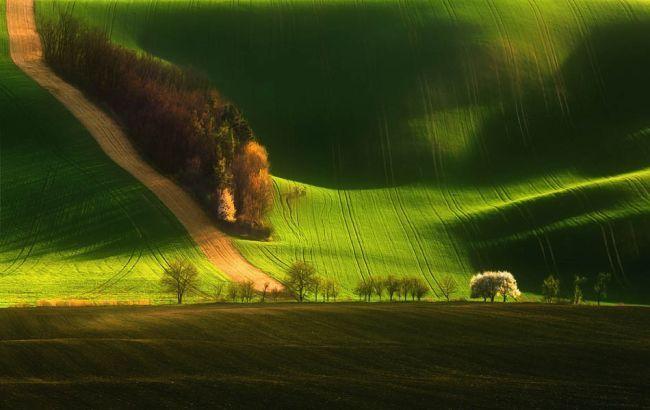 Осенние холмы на фото
