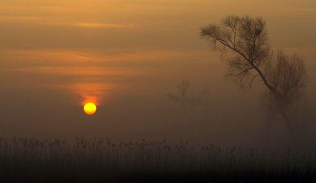 Marek Jedzer красивый пейзаж