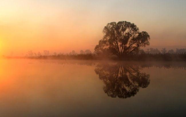 Marek Jedzer туман летом на фото