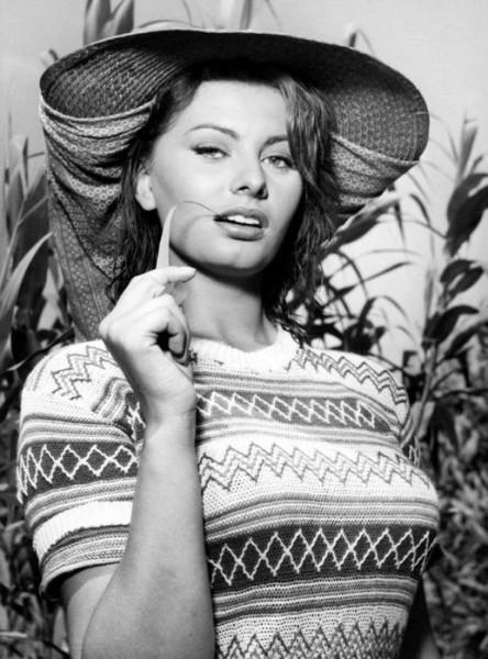 молодая Софи Лорен  на фотографии