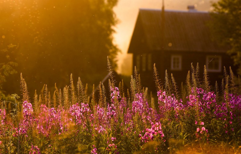 Красивые фотографии природы Yuri Ovchinnikov