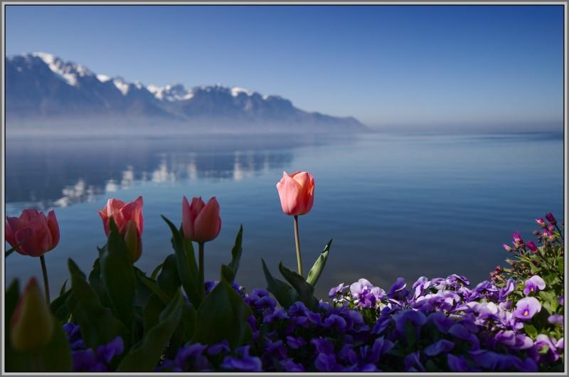 красота души и природы