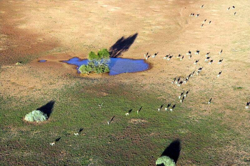Фотографии Африки Michael Poliza