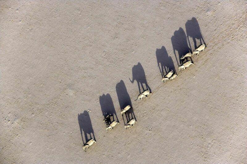 Фото Африки от Michael Poliza