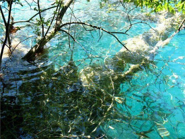 Известковые отложения в Плитвицких озерах  Хорватии