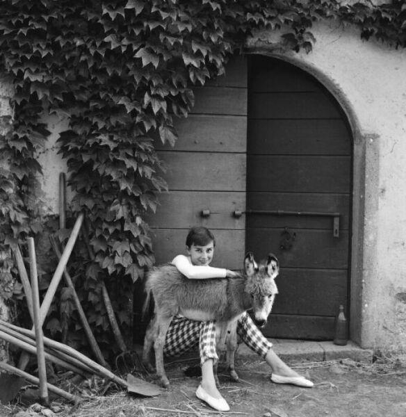 Фотоработы известных фотографов.  Norman Parkinson ©