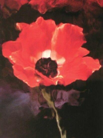 Красный мак Лиллиан Бассман