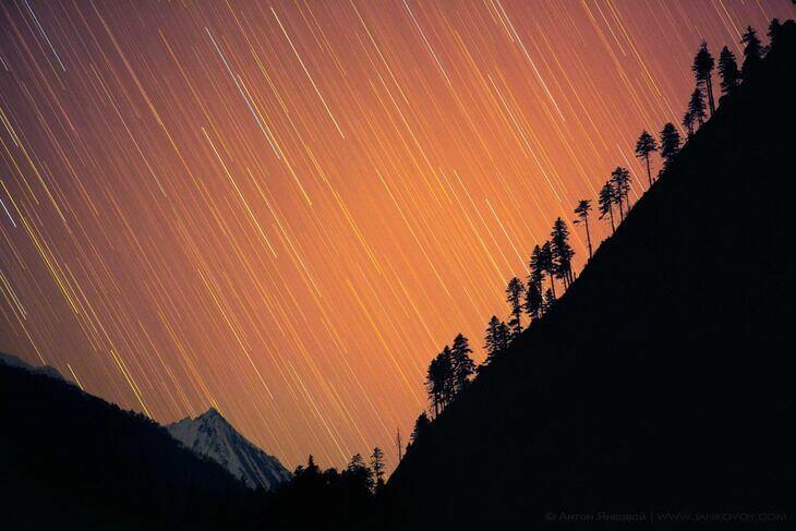 Звездопа Непала