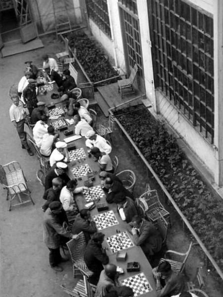 Игра в шахматы в парке ЦПКиО