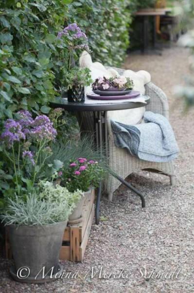 красивые фотографии в саду