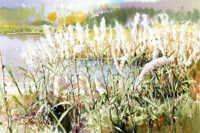 Живопись акварелью полевые травы