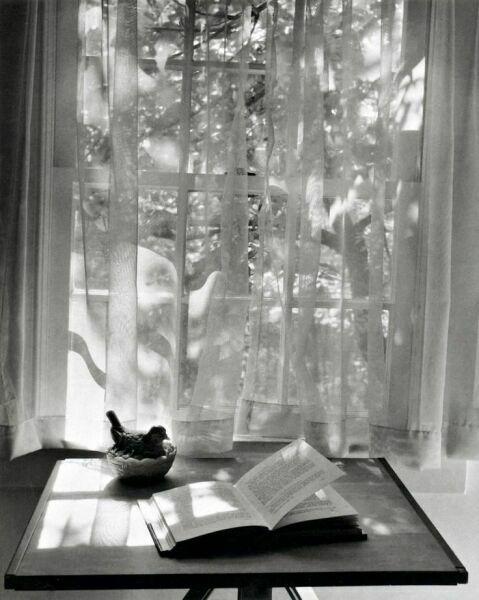 Чтение книг у окна