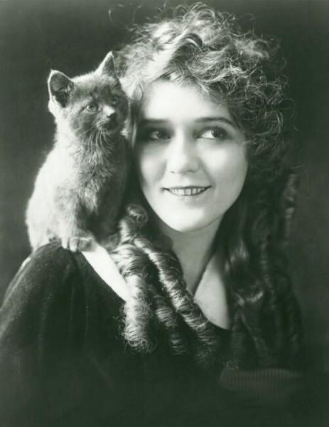 Женщина с кошкой картинки