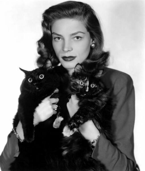 Женщина и кошки на фото