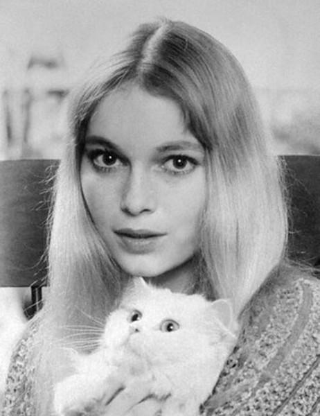 Девушка фото кошка