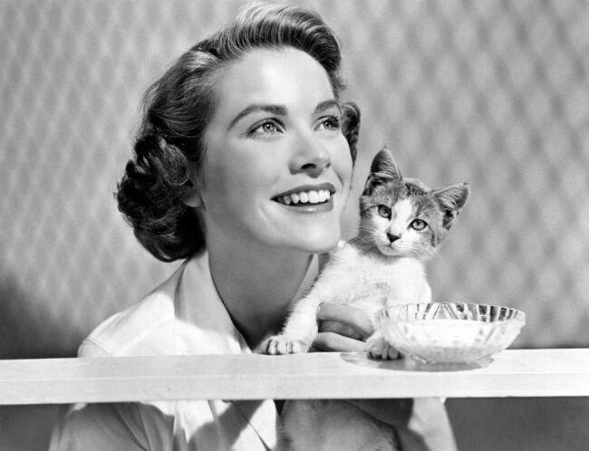 Grace Kelly с котенком