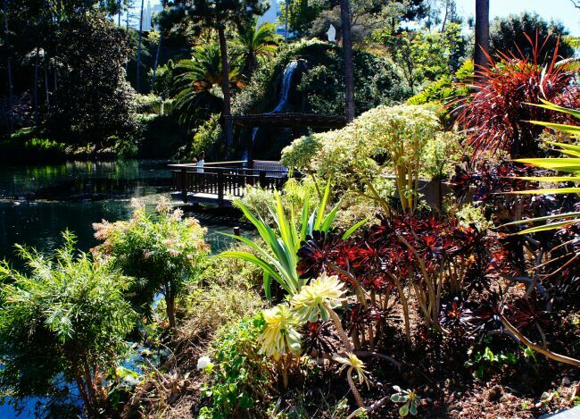 общий вид райского сада