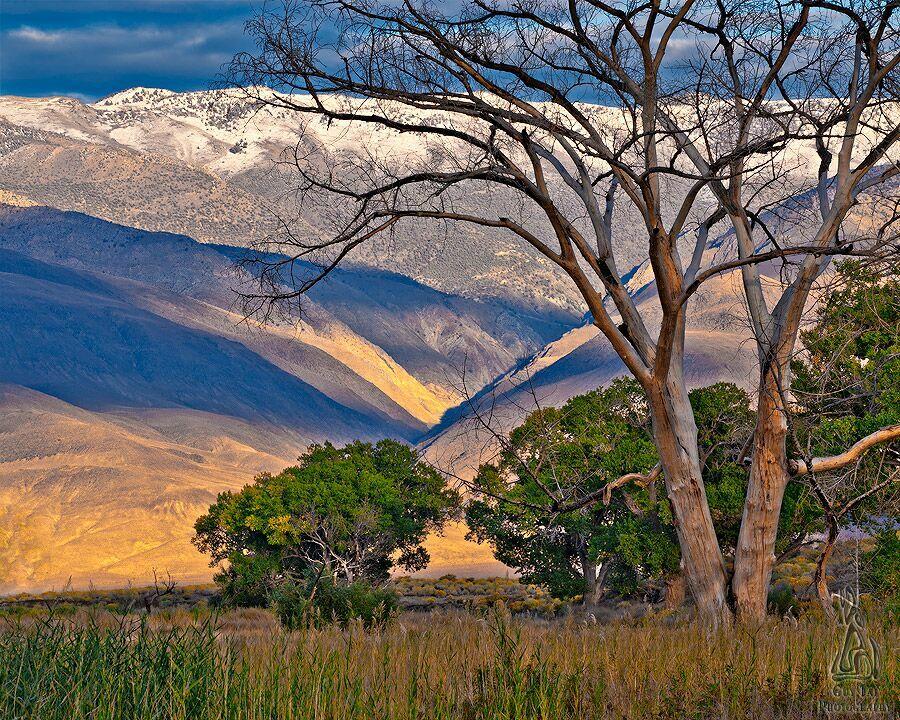 горный пейзаж