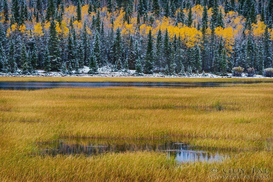 пейзажи природы осень