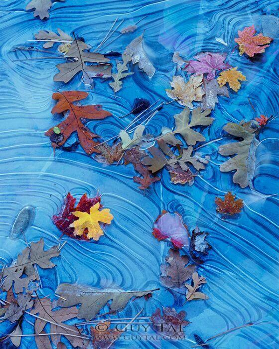 фотокартина осень