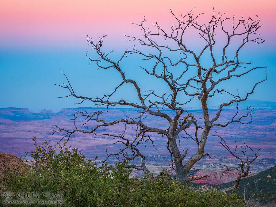 очень красивые пейзажи природы