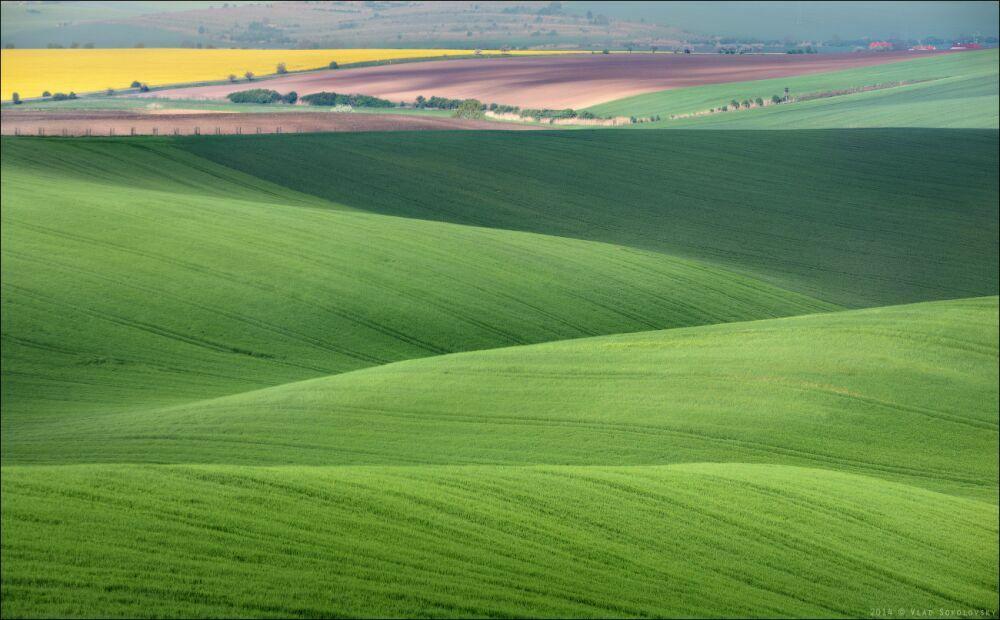 Палитра весенних полей