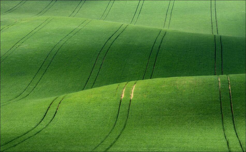 Зеленая Моравия на фото